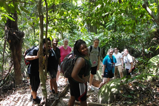 Forest Research Institute Malaysia (FRIM) Nature Trekking Tour