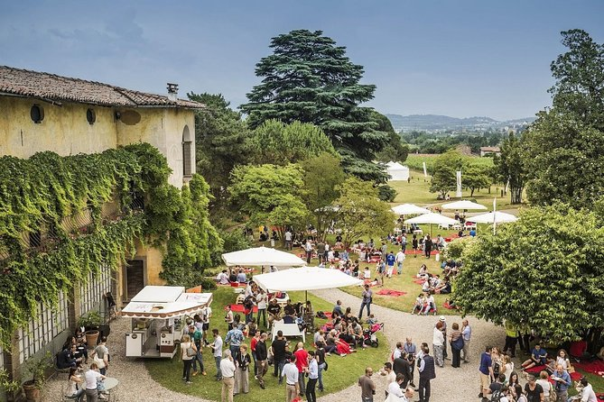 Franciacorta Wine Tasting and Shopping Tour from Bergamo