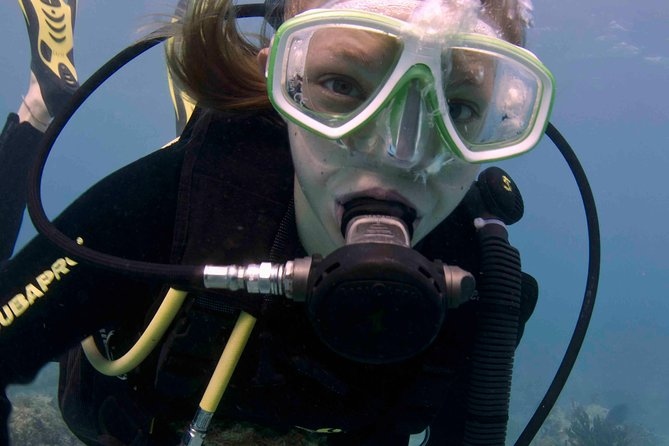 Discover Scuba Diving - one tank at coral reef photo 3
