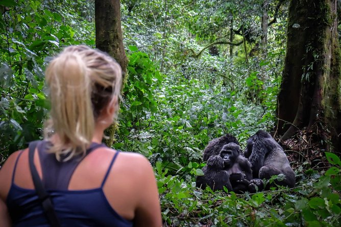 6-Day Gorilla Trekking and Kampala City Tours