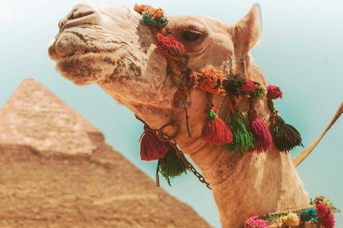 Full Day Tour to Pyramids, Memphis and Saqqara with Lunch and Transportation!