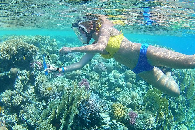 Royal Giftun Island & Fishing & Snorkeling sea trip - Hurghada