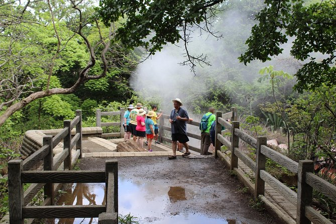 Adventure Day Combo: Rincon de la Vieja and Vida Aventura Park