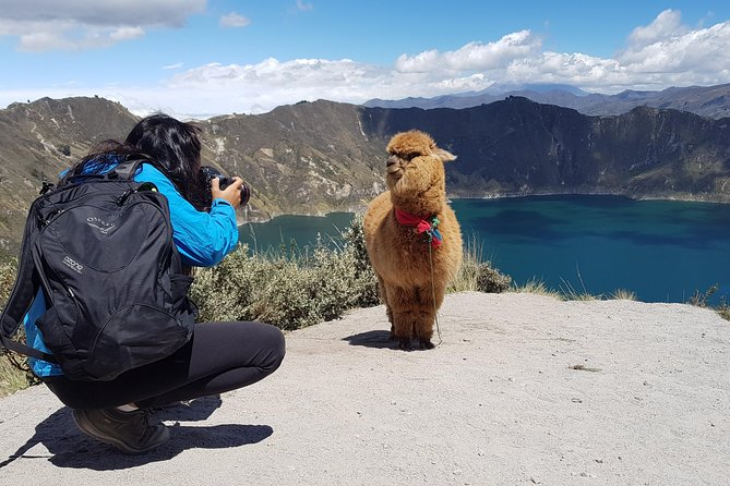 Quilotoa and Cotopaxi Tour - 1 Day - Private Tour