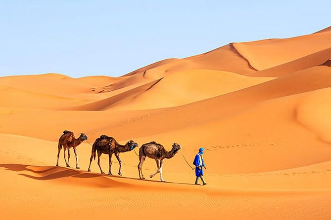 Moroccan Sahara Desert 3-Day Private Guided Tour from Marrakech photo 6