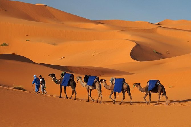 Moroccan Sahara Desert 3-Day Private Guided Tour from Marrakech photo 32