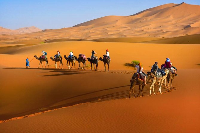 Moroccan Sahara Desert 3-Day Private Guided Tour from Marrakech photo 17