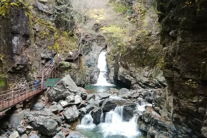 Slow and Easy Hiking in Hida-Osaka (3 hours)