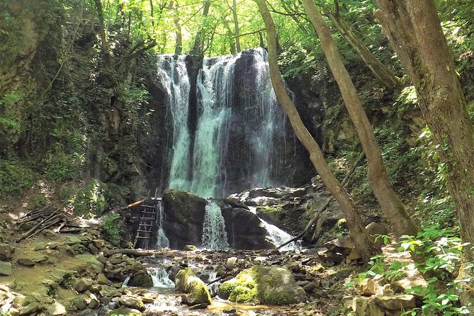 Strumica monasteries and waterfalls tour from Skopje