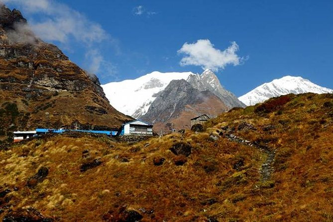 Australian Base Camp with Dhampus Trek from Pokhara.