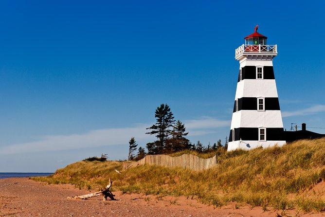 Coastal Lighthouse and Winery Tour