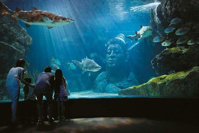 Sea Life ocean world at paragon mall Bangkok