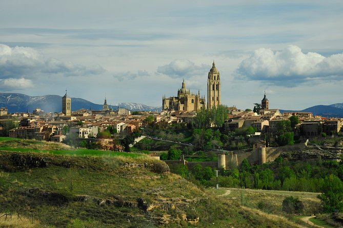 Guided Wine Day Tour to Ribera del Duero from Madrid
