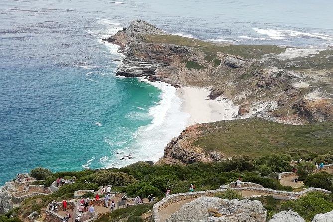 Full day Cape Peninsula experience