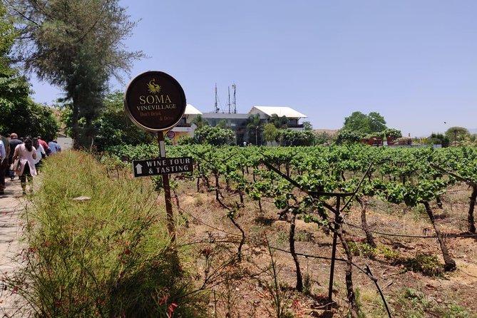 Private One Day Wine Tour Nashik - Maharashtra