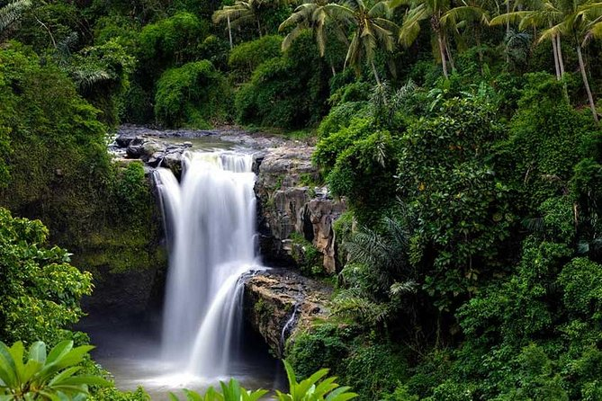 Ubud Waterfall Tour