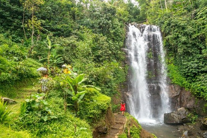 Best of Munduk Waterfall Trekking Tour