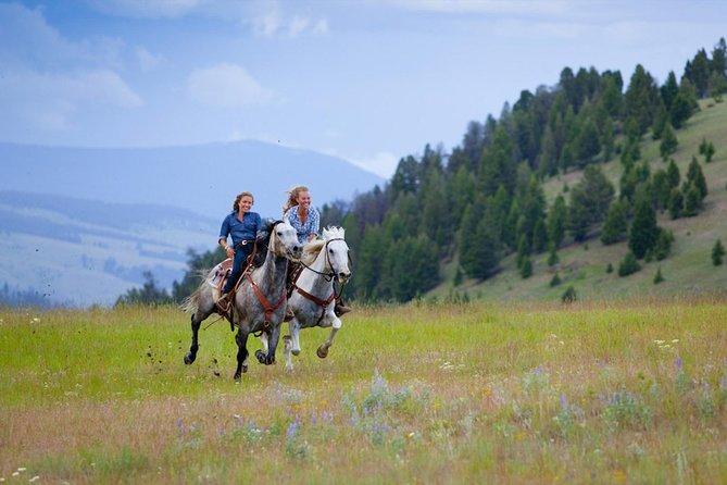 Trails Honeymoon Ride