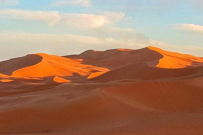 Zagora overnight From Marrakech 01 night in desert