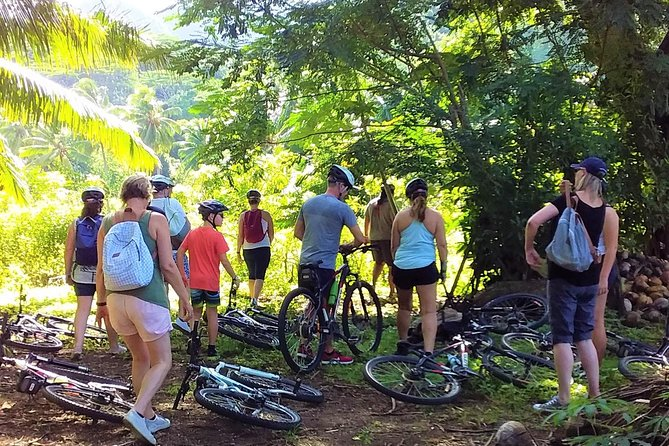 'Discover' Rarotonga Cycling Tour with Lunch photo 2