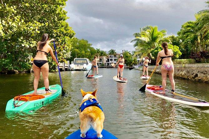 SUP PUP Paddleboard Tour