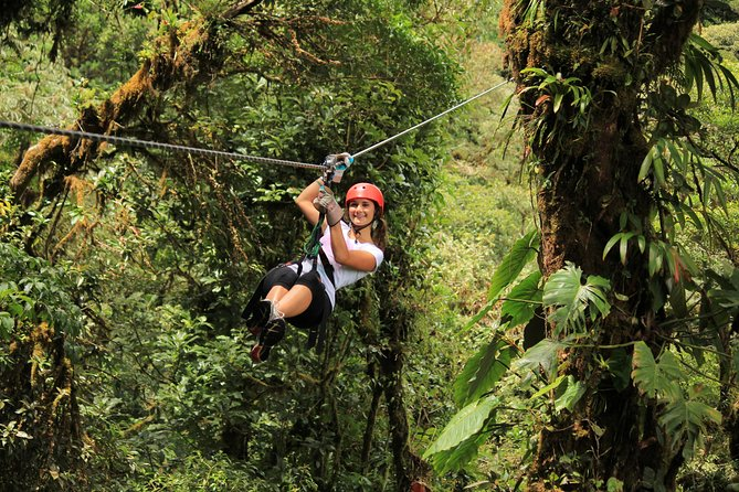 Rainforest Canopy Zipline & Hanging Bridges Tour From Monteverde