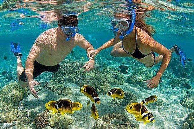 Pink Beach Lombok Snorkeling Tour