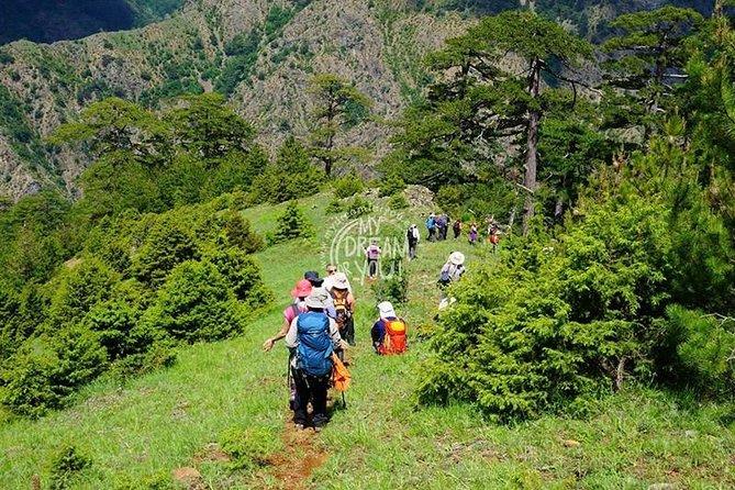 Hike on Mount Olympus