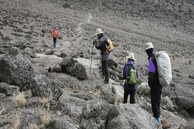 6 Days KilimanjaroTrekking via Machame Route