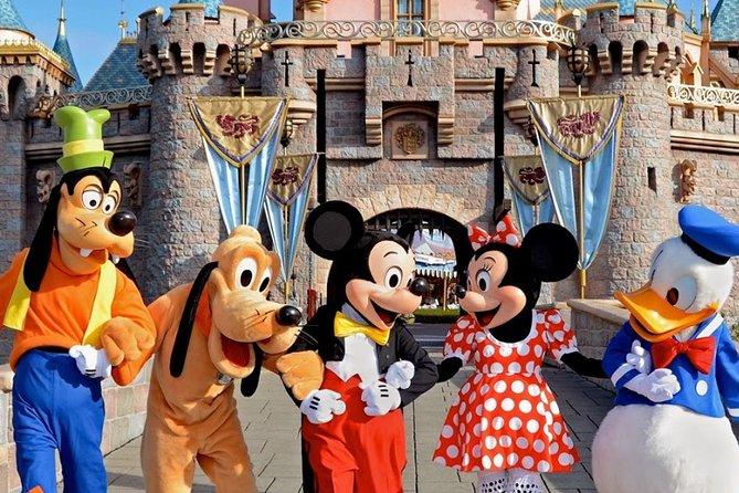 Disneyland Paris Transfer (One Way)