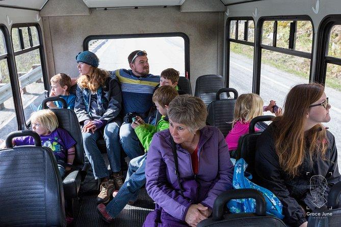 Skagway VIP: 3 hour Summit Adventure