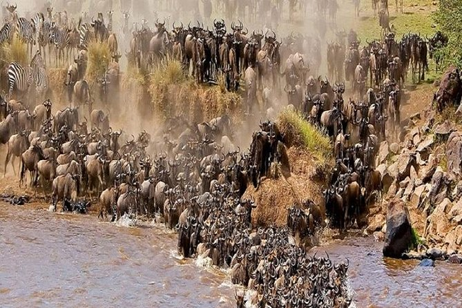 4 Days 3 Nights Serengeti & Ngorongoro Crater