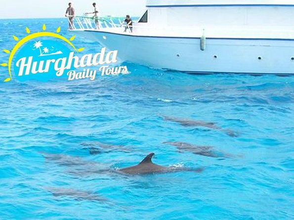 Swimming with wild dolphins from Hurghada