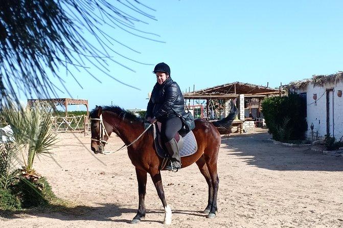 Horse Riding 2 Hours Hurghada (Desert & Beach)