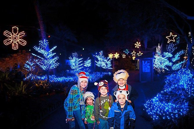 Lowry Park Zoo Christmas.Christmas In The Wild At Tampa S Lowry Park Zoo 2019