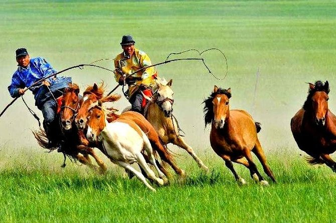 5-Day HulunBuir Private Tour Combo Package of Grassland and Wetland with Hotel
