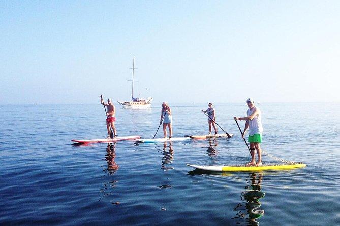 Paddle Boarding Tour on the beautiful Marbella Coast