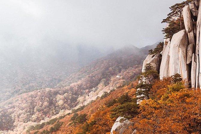 Private Van Tour to Seoraksan, Naksansa Temple & More