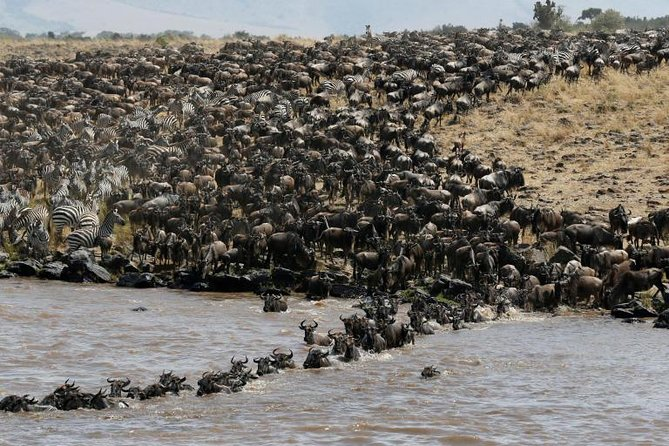 4 days masai mara and lake Nakuru from Nairobi