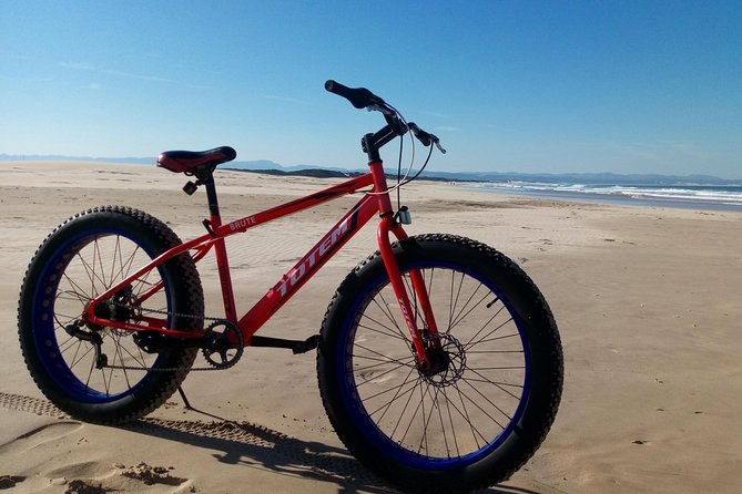 Fat Bike Beach Ride photo 1