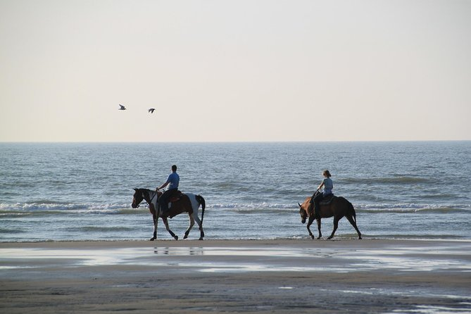 Horse riding on the Beach, Rhodes photo 1