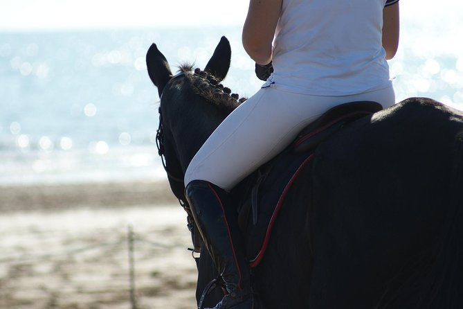 Horse riding on the Beach, Rhodes photo 13