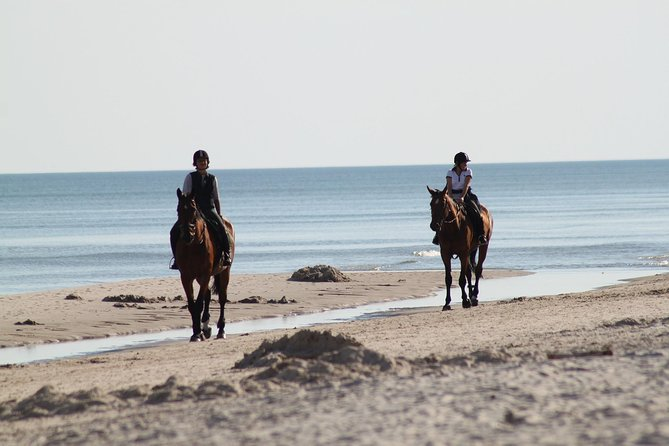 Horse riding on the Beach, Rhodes photo 15
