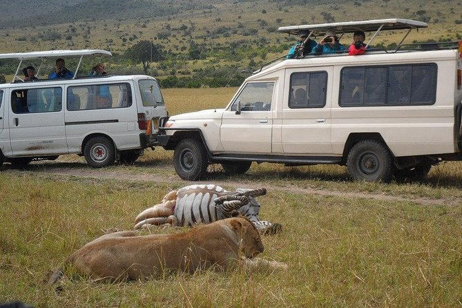 Nairobi Half Day/nairobi Park/elephant Orphanage/giraffe Centre/ Carnivore Hotel