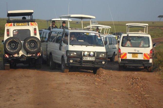 Nairobi National Park 1.p.m Game Drive
