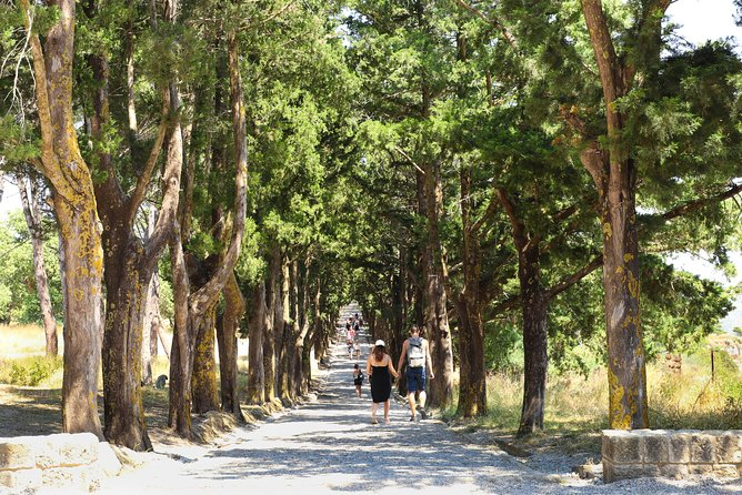 Rhodes Top 3 Sights to Kallithea, Butterfly Valley, and Filerimos Full-Day Tour photo 13