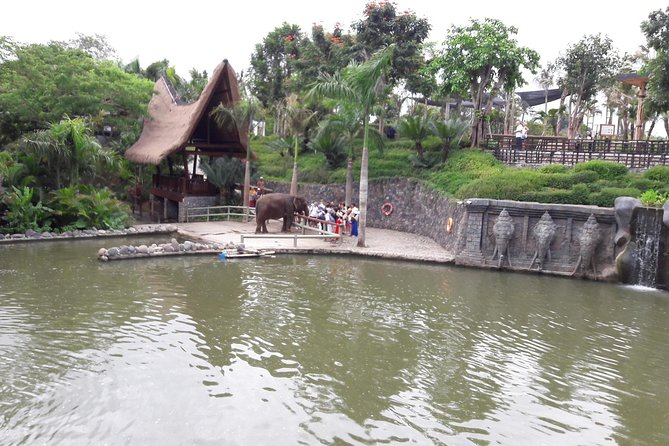 Bali Zoo and Activities Tour Package
