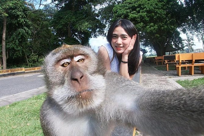 Bali Most Instagram Photos Spot Trip