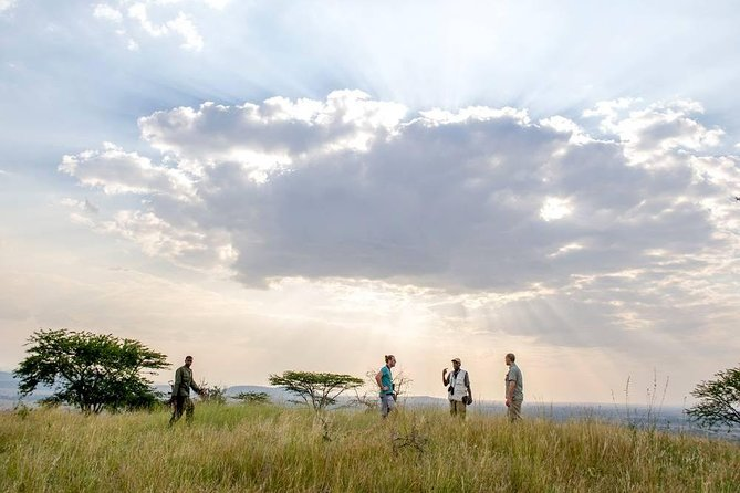 4 Days Tanzania Family Luxury Safari photo 9