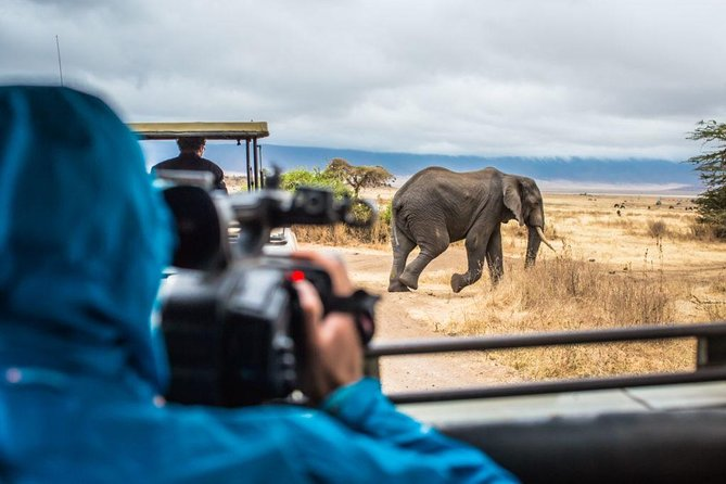 4 Days Tanzania Family Luxury Safari photo 7